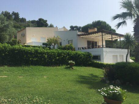 Ενοικιαζόμενη Βίλα με μεγάλο κήπο & BBQ στον Θεολόγο Φθιώτιδας