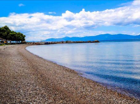 Παραλία Λεκούνας στον Θεολόγο Μαλεσίνα Φθιώτιδας